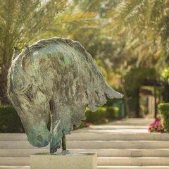Отель Desert Palm ОАЭ, Дубай - отзывы, цены и фото номеров - забронировать отель Desert Palm онлайн фото 8
