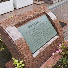 Отель Sotetsu Fresa Inn Nihombashi-Kayabacho детские мероприятия