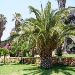 Pataros Hotel Турция, Патара - отзывы, цены и фото номеров - забронировать отель Pataros Hotel онлайн фото 14