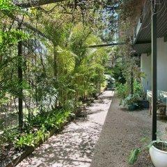 Отель Daintree Wild Zoo & Bed and Breakfast фото 15