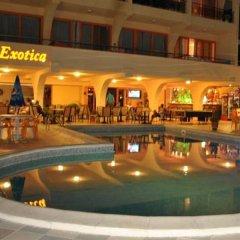 Hotel Exotica с домашними животными