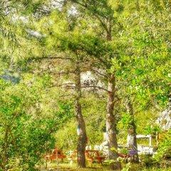 Гостевой Дом Dionysos Lodge Кемер фото 2