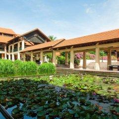 Отель Pandanus Resort гостиничный бар