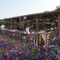 Отель Crystal Flora Beach Resort фото 14