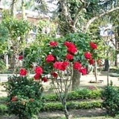 Отель Rhino Lodge & Hotel Непал, Саураха - отзывы, цены и фото номеров - забронировать отель Rhino Lodge & Hotel онлайн фото 5