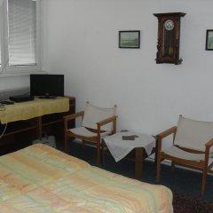 Отель Pension Hanspaulka комната для гостей фото 3