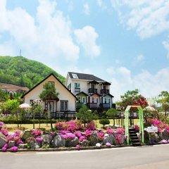 Отель Daegwalnyeong Beauty House Pension Южная Корея, Пхёнчан - отзывы, цены и фото номеров - забронировать отель Daegwalnyeong Beauty House Pension онлайн фото 3