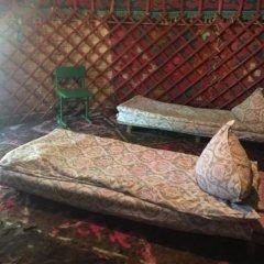 Отель Turkestan Yurt Camp Кыргызстан, Каракол - отзывы, цены и фото номеров - забронировать отель Turkestan Yurt Camp онлайн удобства в номере фото 2