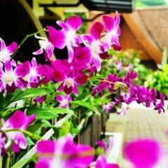 Отель Orchidacea Resort фото 2
