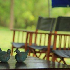 Отель Big Game Camp Yala Шри-Ланка, Катарагама - отзывы, цены и фото номеров - забронировать отель Big Game Camp Yala онлайн фото 5