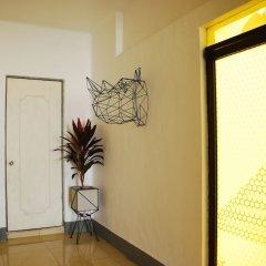 Отель Wanderlust District Мексика, Мехико - отзывы, цены и фото номеров - забронировать отель Wanderlust District онлайн фото 9