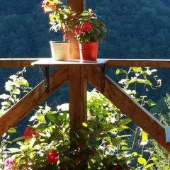 Ekodanitap Natural Life Турция, Чамлыхемшин - отзывы, цены и фото номеров - забронировать отель Ekodanitap Natural Life онлайн балкон