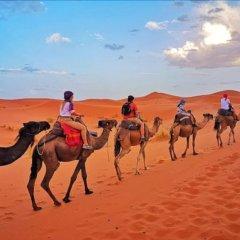 Отель Desert Berber Fire Camp Марокко, Мерзуга - отзывы, цены и фото номеров - забронировать отель Desert Berber Fire Camp онлайн фото 2