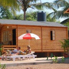 Отель Paradise Village Beach Resort Индия, Гоа - отзывы, цены и фото номеров - забронировать отель Paradise Village Beach Resort онлайн гостиничный бар
