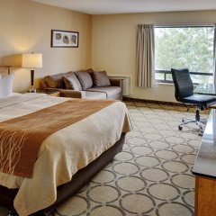 Отель Comfort Inn Ottawa East Канада, Оттава - отзывы, цены и фото номеров - забронировать отель Comfort Inn Ottawa East онлайн комната для гостей фото 2