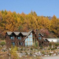 Отель Chalet Resort Южная Корея, Пхёнчан - отзывы, цены и фото номеров - забронировать отель Chalet Resort онлайн фото 8