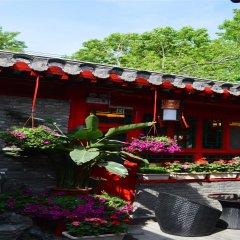 Beijing 161 Lama Temple Courtyard Hotel фото 8