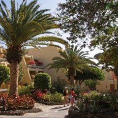 Отель Sol Fuerteventura Jandia Морро Жабле