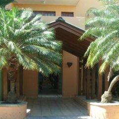 Отель Calypso Beach Доминикана, Бока Чика - отзывы, цены и фото номеров - забронировать отель Calypso Beach онлайн развлечения