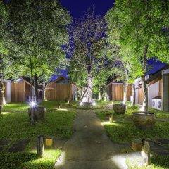 Отель Into The Forest Resort фото 7