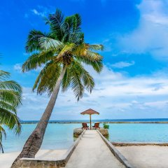 Отель Ellaidhoo Maldives by Cinnamon