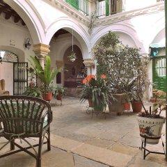 Отель Apartamentos Jerez Испания, Херес-де-ла-Фронтера - отзывы, цены и фото номеров - забронировать отель Apartamentos Jerez онлайн фото 27