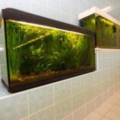 Отель Cottage Sanatorium Belorusija ванная фото 2