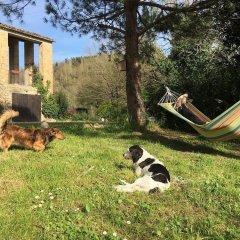 Отель Agriturismo La Distesa Монтекассино с домашними животными