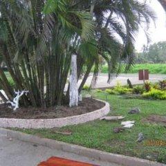 Отель Golden Palms Retreat Фиджи, Вити-Леву - отзывы, цены и фото номеров - забронировать отель Golden Palms Retreat онлайн фото 2