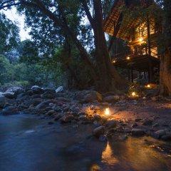Отель Ella Jungle Resort Шри-Ланка, Бандаравела - отзывы, цены и фото номеров - забронировать отель Ella Jungle Resort онлайн с домашними животными
