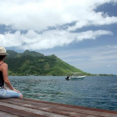 Отель Fare Vaihere Французская Полинезия, Муреа - отзывы, цены и фото номеров - забронировать отель Fare Vaihere онлайн фитнесс-зал