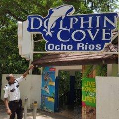 Отель Ocho Rios Getaway Villa at The Palms спортивное сооружение
