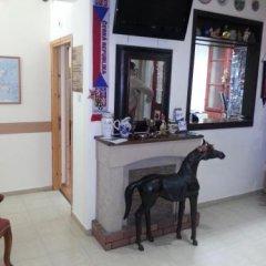 Haddad Guest House Израиль, Хайфа - отзывы, цены и фото номеров - забронировать отель Haddad Guest House онлайн с домашними животными