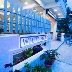 Отель Whiteharp Beach Inn Мальдивы, Мале - отзывы, цены и фото номеров - забронировать отель Whiteharp Beach Inn онлайн фото 10