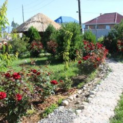 Отель Happy Nomads Yurt Camp Кыргызстан, Каракол - отзывы, цены и фото номеров - забронировать отель Happy Nomads Yurt Camp онлайн фото 17