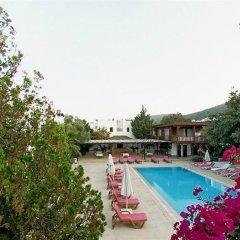 Club Alisya Турция, Торба - отзывы, цены и фото номеров - забронировать отель Club Alisya онлайн фото 6