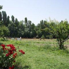 Отель Agriturismo Case Mori Римини приотельная территория