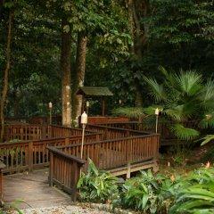 Отель The Lodge at Pico Bonito фото 8