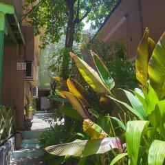 Отель Caribic House Hotel Ямайка, Монтего-Бей - отзывы, цены и фото номеров - забронировать отель Caribic House Hotel онлайн фото 3