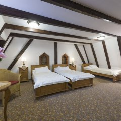 Отель Cerny Slon Чехия, Прага - 2 отзыва об отеле, цены и фото номеров - забронировать отель Cerny Slon онлайн комната для гостей фото 5