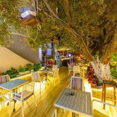 Отель Villa Qendra Албания, Ксамил - отзывы, цены и фото номеров - забронировать отель Villa Qendra онлайн бассейн