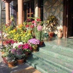 Отель View Point Непал, Покхара - отзывы, цены и фото номеров - забронировать отель View Point онлайн фото 6