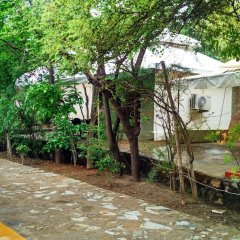 Отель Mana Kumbhalgarh фото 8