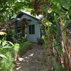 Отель Colo-I-Suva Rainforest Eco Resort Вити-Леву фото 15