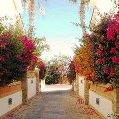 Отель Los Cabos Golf Resort, a VRI resort фото 15