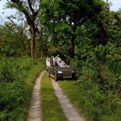 Отель Safari Adventure Lodge Непал, Саураха - отзывы, цены и фото номеров - забронировать отель Safari Adventure Lodge онлайн