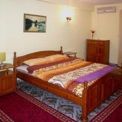 Отель Family Hotel Victoria Gold Болгария, Димитровград - отзывы, цены и фото номеров - забронировать отель Family Hotel Victoria Gold онлайн удобства в номере фото 2