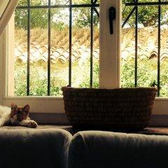 Отель La Martina Country House Италия, Нумана - отзывы, цены и фото номеров - забронировать отель La Martina Country House онлайн фото 9