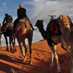 Отель Kasbah Leila Марокко, Мерзуга - отзывы, цены и фото номеров - забронировать отель Kasbah Leila онлайн пляж фото 2