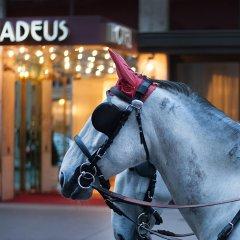 Hotel Amadeus спортивное сооружение